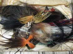 Large quantity of various birds feathers
