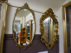 Two ornate gilt framed mirrors