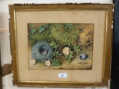 A framed oil on canvas of birds nest signed E.