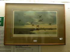 A framed and glazed print of flying ducks after Peter Scott and signed by same,
