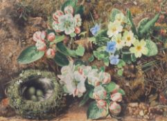 IN THE MANNER OF OLIVER CLAIRE Spring flowers and a bird's nest on a mossy bank, watercolour,