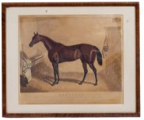 AN EARLY VICTORIAN ENGRAVED DRINKING GLASS inscribed to Beeswing, the racehorse, circa 1850, 9.5cm