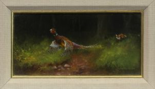 PHEASANT, AN OIL BY GORDON ASHLEY HUNTER
