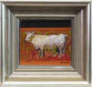 YOUNG BULL, AN OIL BY DAVID MCLEOD MARTIN