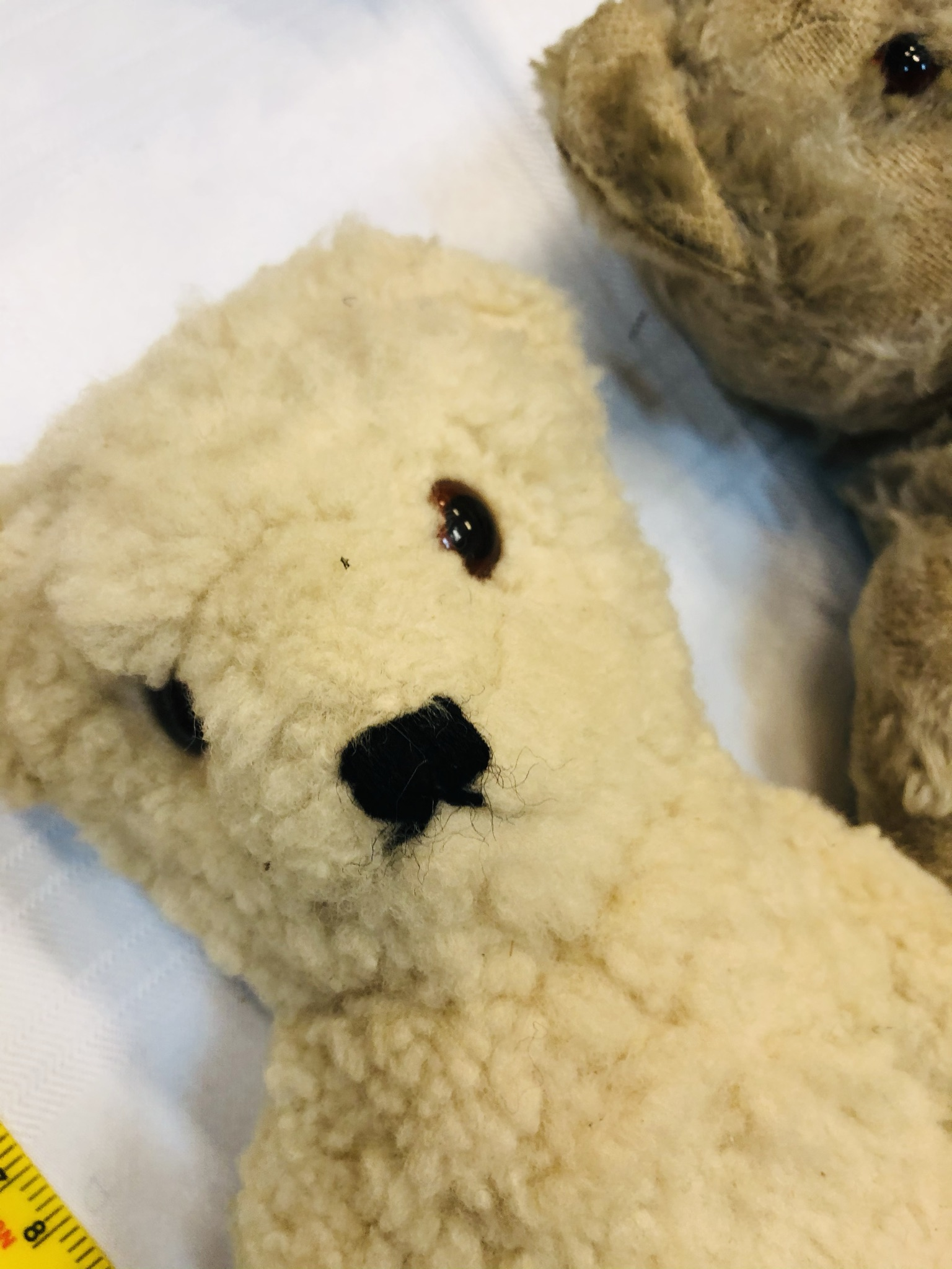 Trio of vintage bears, slightly smaller then previous lots. Includes an early Chad Valley example. - Image 3 of 6