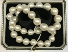 A South Sea (Northern Australian) pearl