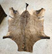A Hartebeest pelt, unmounted,