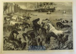 India - The Horses Morning Bath at Calcutta original woodblock engraving 1868 35x25cm to card