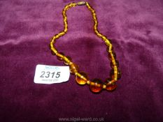 A choker length necklace of graduated Amber beads.