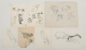 Harry Arthur Riley R.I. (1895-1966), six pencil/ ink sketches, various studies of animals to include