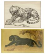 "After Paul Jouve (1878-1973) and Jacques Cartier (1907-2001) ""Jaguar and Serpent"" and ""Panther"""