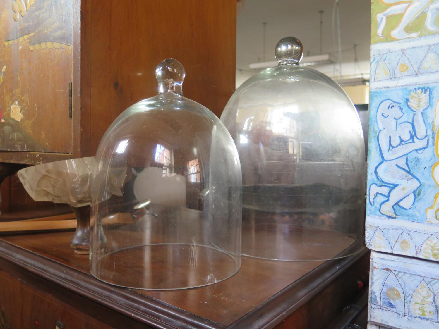 Lot 1016 - Two Glass Bell Jars