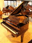 Steinway (c1906) A 5ft 10in Model O grand piano in a bright ebonised case on square tapered legs.