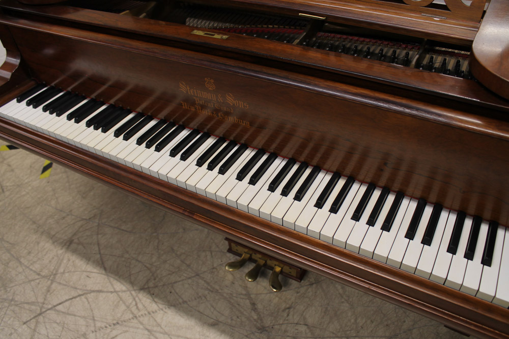 Steinway (c1900) A 6ft 11in 88-note Model B grand piano in a rosewood case on square tapered legs. - Image 3 of 6