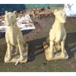 A pair of seated dog garden statues - one base a/f