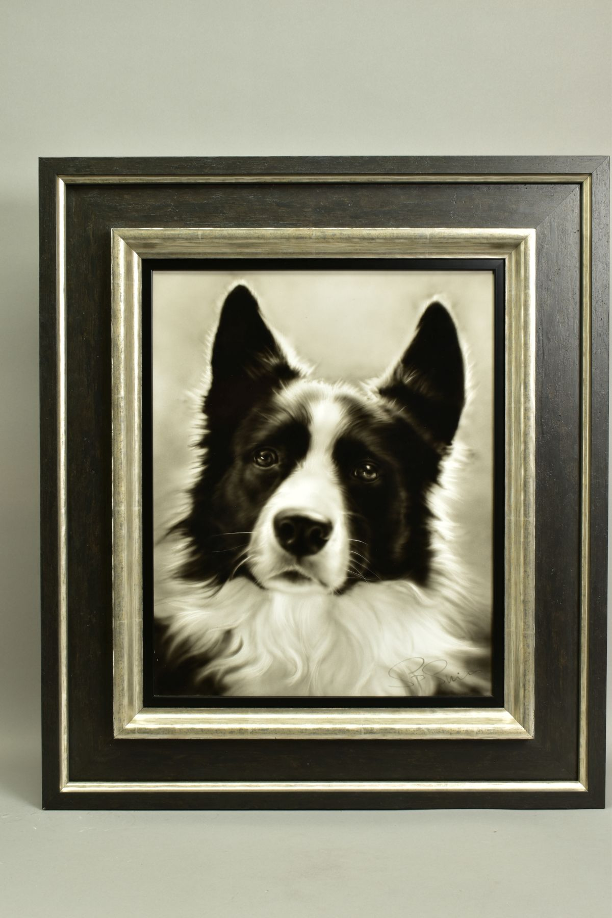 STEVEN SMITH (BRITISH 1974), 'Collie', a portrait of a Collie Dog, signed bottom right, air brush on