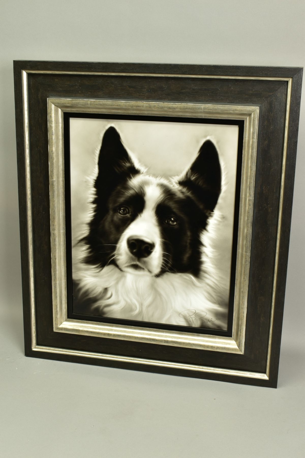 STEVEN SMITH (BRITISH 1974), 'Collie', a portrait of a Collie Dog, signed bottom right, air brush on - Image 5 of 6