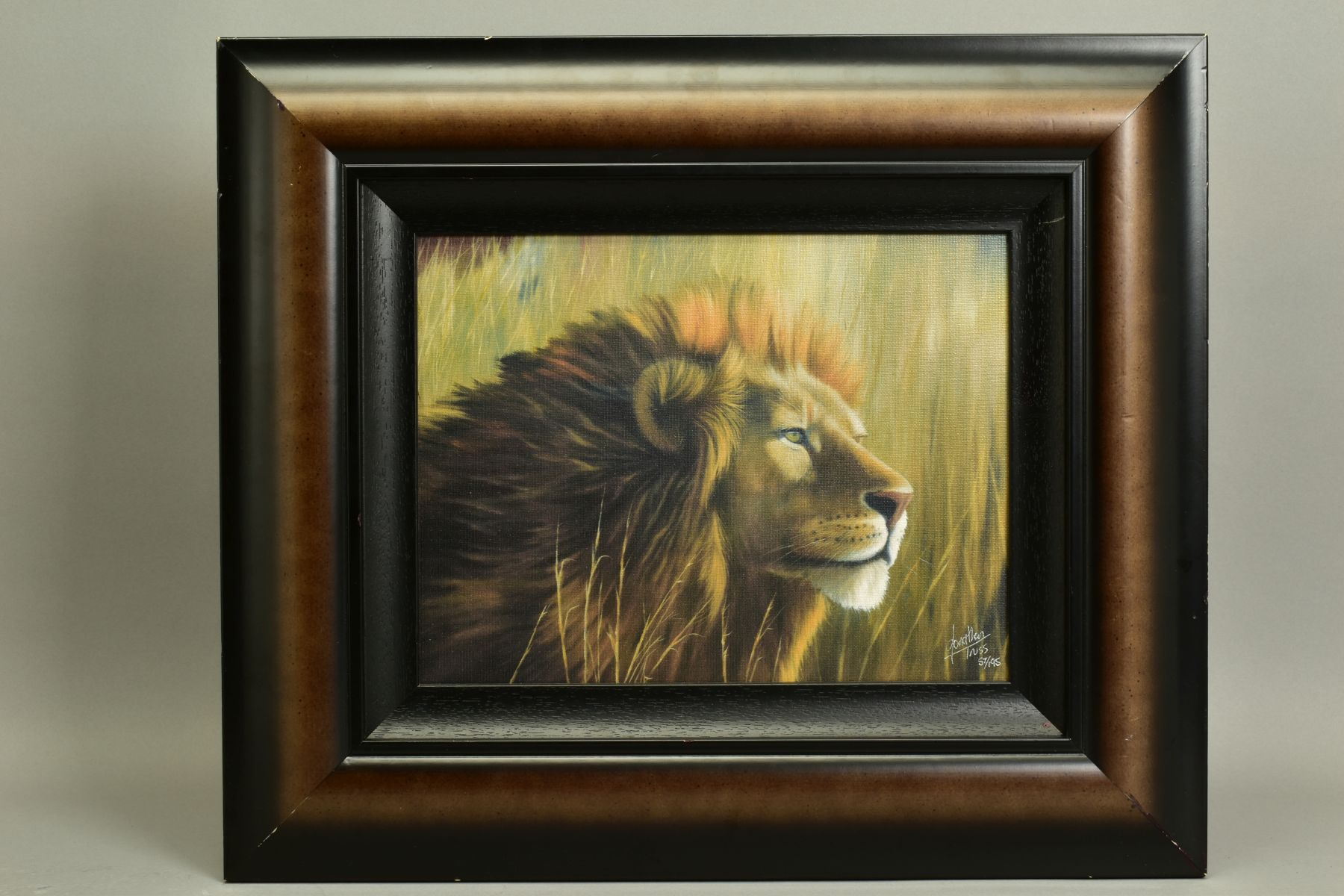 JONATHAN TRUSS (BRITISH 1960), 'Braveheart', a Limited Edition portrait of a Lion, signed bottom