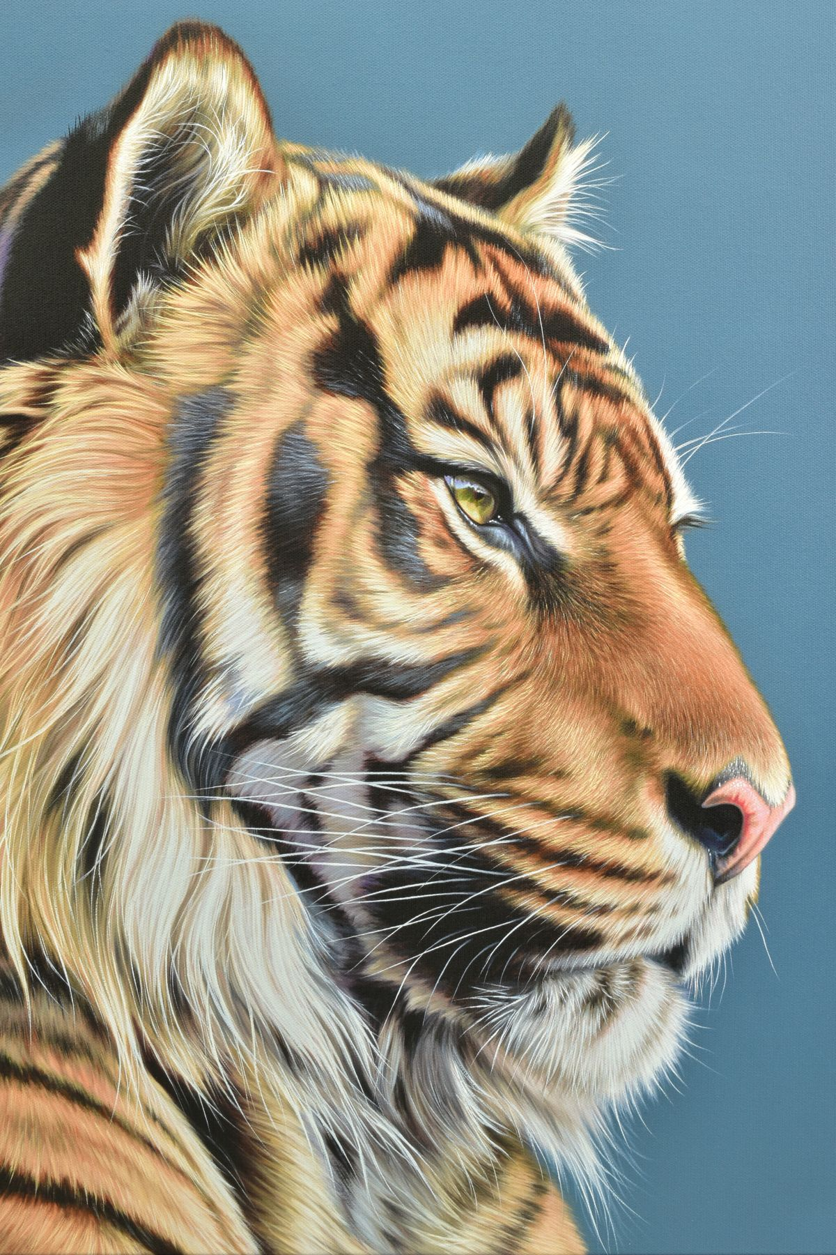 DARRYN EGGLETON (SOUTH AFRICA 1981), 'The Sentinel', an artist proof print of a Tiger, 16/20, signed - Image 2 of 6