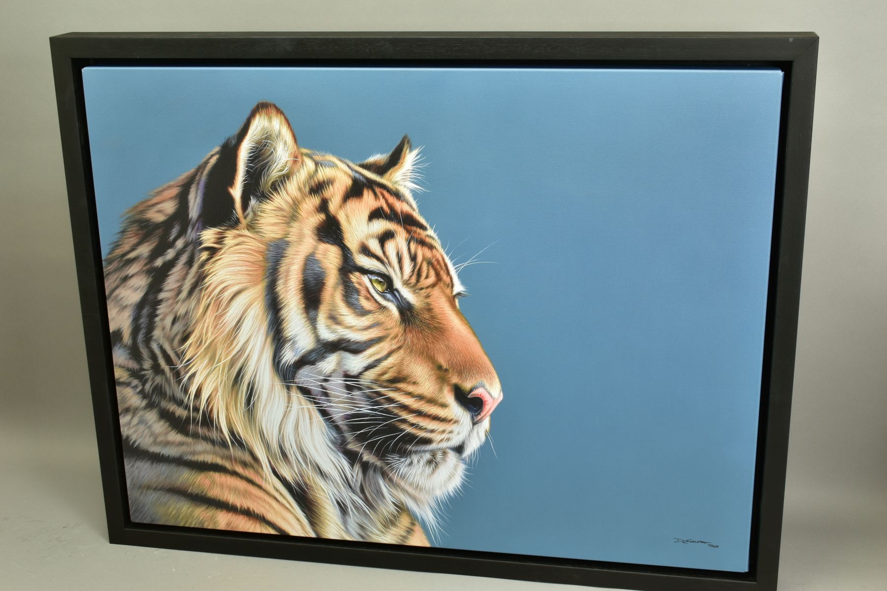 DARRYN EGGLETON (SOUTH AFRICA 1981), 'The Sentinel', an artist proof print of a Tiger, 16/20, signed - Image 5 of 6