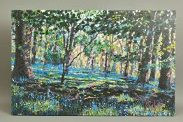 TIMMY MALLETT (BRITISH CONTEMPORARY) 'Bluebell Shadows', an artist proof print of a woodland