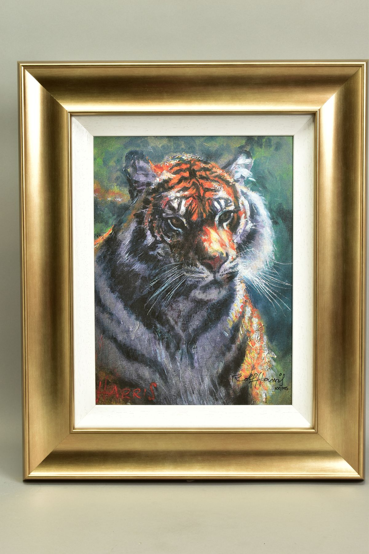 ROLF HARRIS (AUSTRALIAN 1930), 'Tiger in The Sun', a Limited Edition print, 100/95, signed bottom
