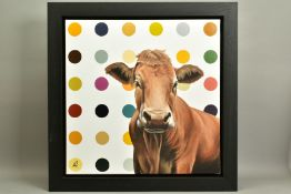 HAYLEY GOODHEAD (BRITISH CONTEMPORARY), 'Ginger', a portrait of a Jersey Cow against a spotted