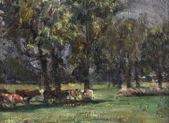 Irish School - CATTLE GRAZING BY TREES - Oil on Canvas - 12 x 16 inches - Signed