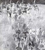 Basil Blackshaw, HRHA HRUA - FOX HOUNDS - Pencil on Paper - 16 x 14 inches - Signed