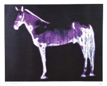 Ross Wilson, ARUA - LUNA, HORSE OF LORCA - Limited Edition Coloured Print (12/100) - 17 x 21.5