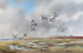 Robert W. Milliken - MALLARDS COMING IN FROM THE SHORE - Watercolour Drawing - 20 x 30 inches -
