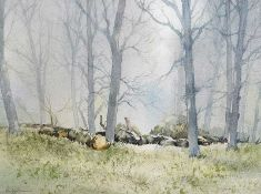George C. Morrison, RUA - TREES AT LAGAN VALLEY PARK - Watercolour Drawing - 13 x 18 inches -