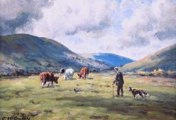 Charles McAuley - CATTLE GRAZING IN THE GLENS - Coloured Print - 6 x 8 inches - Unsigned