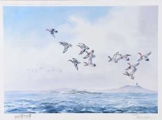 Robert W. Milliken - MALLARDS OVER STRANGFORD LOUGH - Limited Edition Coloured Print (110/300) -