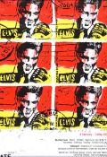 Neil Shawcross, RHA RUA - ELVIS TATE GALLERY EXHIBITION POSTER - Coloured Screen Print - 16 x 10