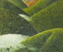 Robert Maclaurin, Australian/ Scottish b.1961- Evening Arrival, Tanceli; oil on canvas, signed lower
