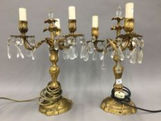 A pair of ormolu candelabra (converted to electricity)