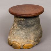 A preserved taxidermy elephant's foot Set as a wastepaper bin/stool with removable circular top.