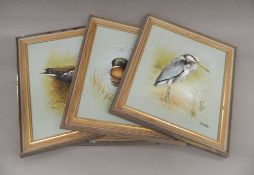PETER WELCH (20th century) British, four Ornithological oils on canvas, each framed. 30.5 x 35 cm.