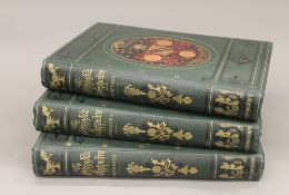 The National Shakespeare: A facsimile of the original text of the first folio of 1623,