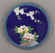 A small Chinese cloisonne dish. 12 cm diameter.