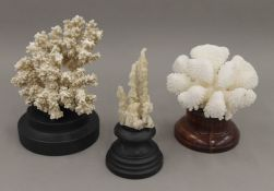 Three coral specimens, on display stands. The largest 15 cm high.