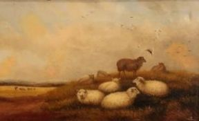 T. Jackson (19th C): Sheep and cattle in an extensive landscape, oil on canvas, signed, 23cm x 39cm