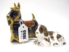A Royal Crown Derby Paperweight 'Scottish Terrier', gold stopper, date code for 2006, 11cm high;