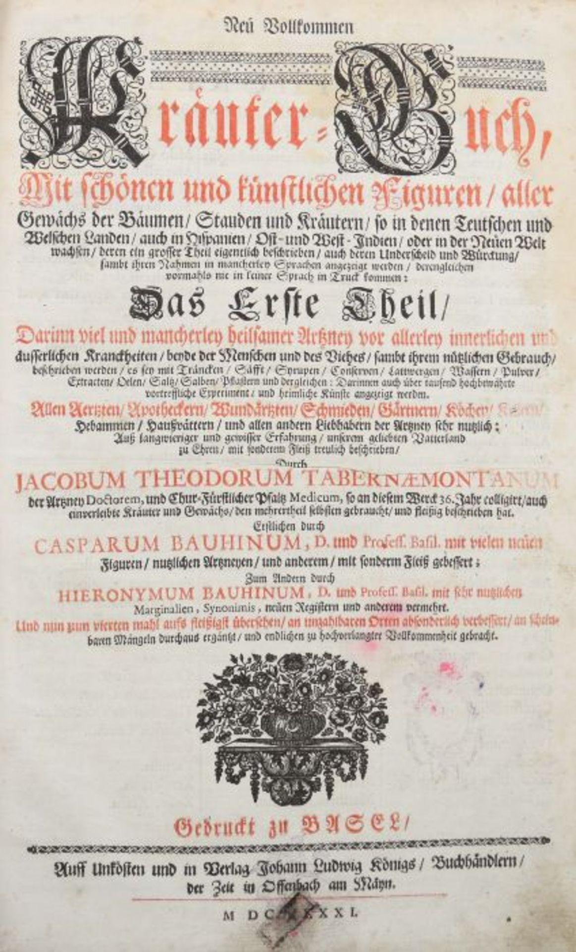 Tabernaemontanus, Jacob Theodor (Jacobus Theodorus) Neu vollkommen Kräuter-Buch, mit schönen und - Bild 4 aus 6
