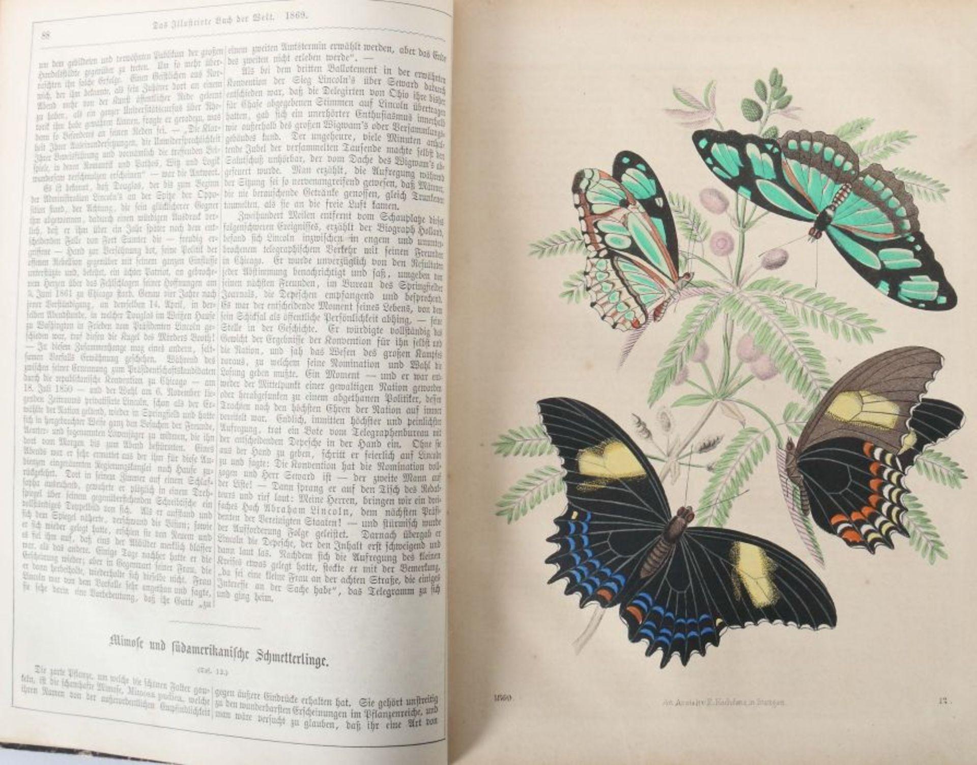Das Buch der Welt ein Inbegriff des Wissenwürdigsten und Unterhaltendsten aus den Gebieten der - Bild 5 aus 6