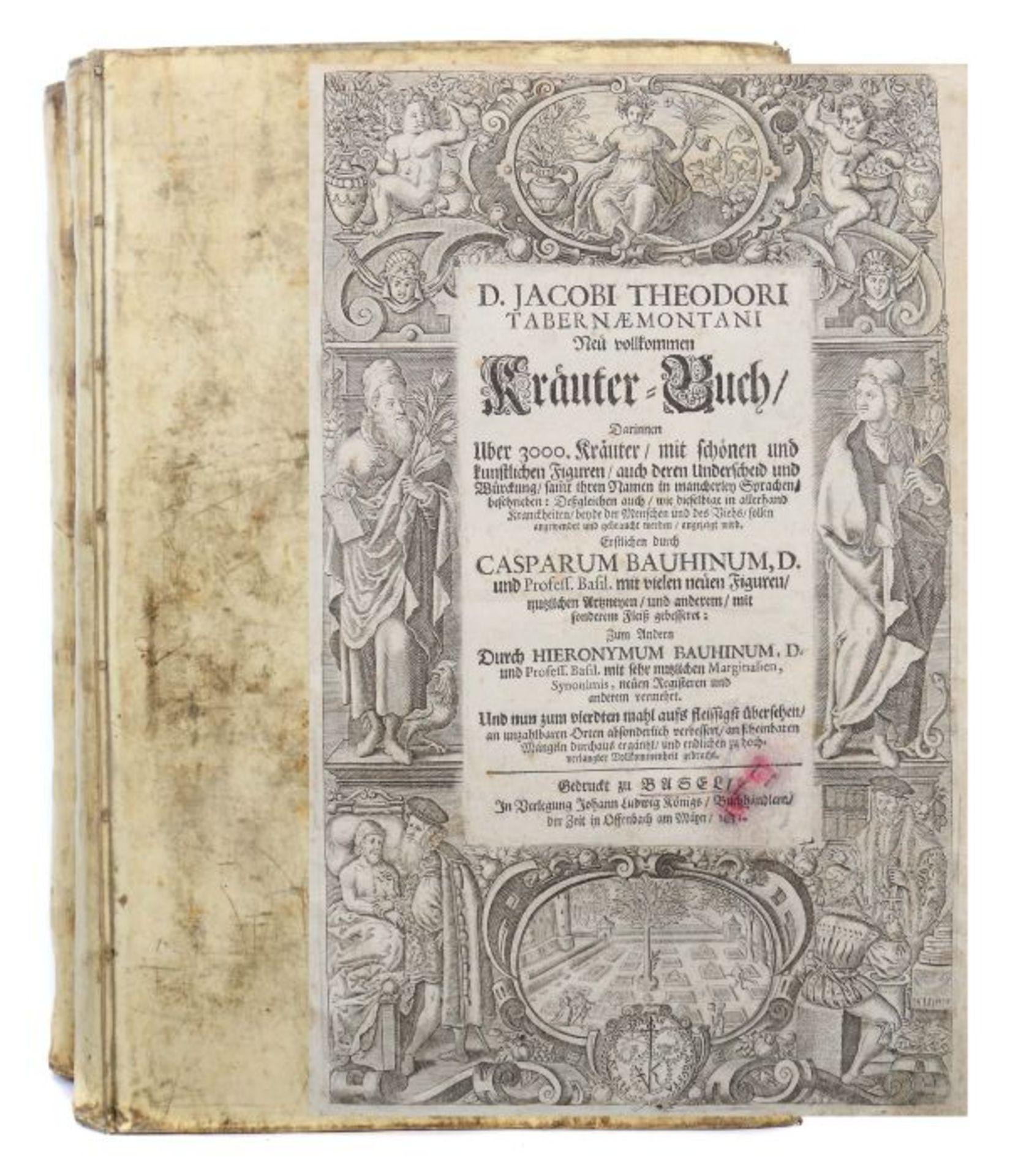 Tabernaemontanus, Jacob Theodor (Jacobus Theodorus) Neu vollkommen Kräuter-Buch, mit schönen und