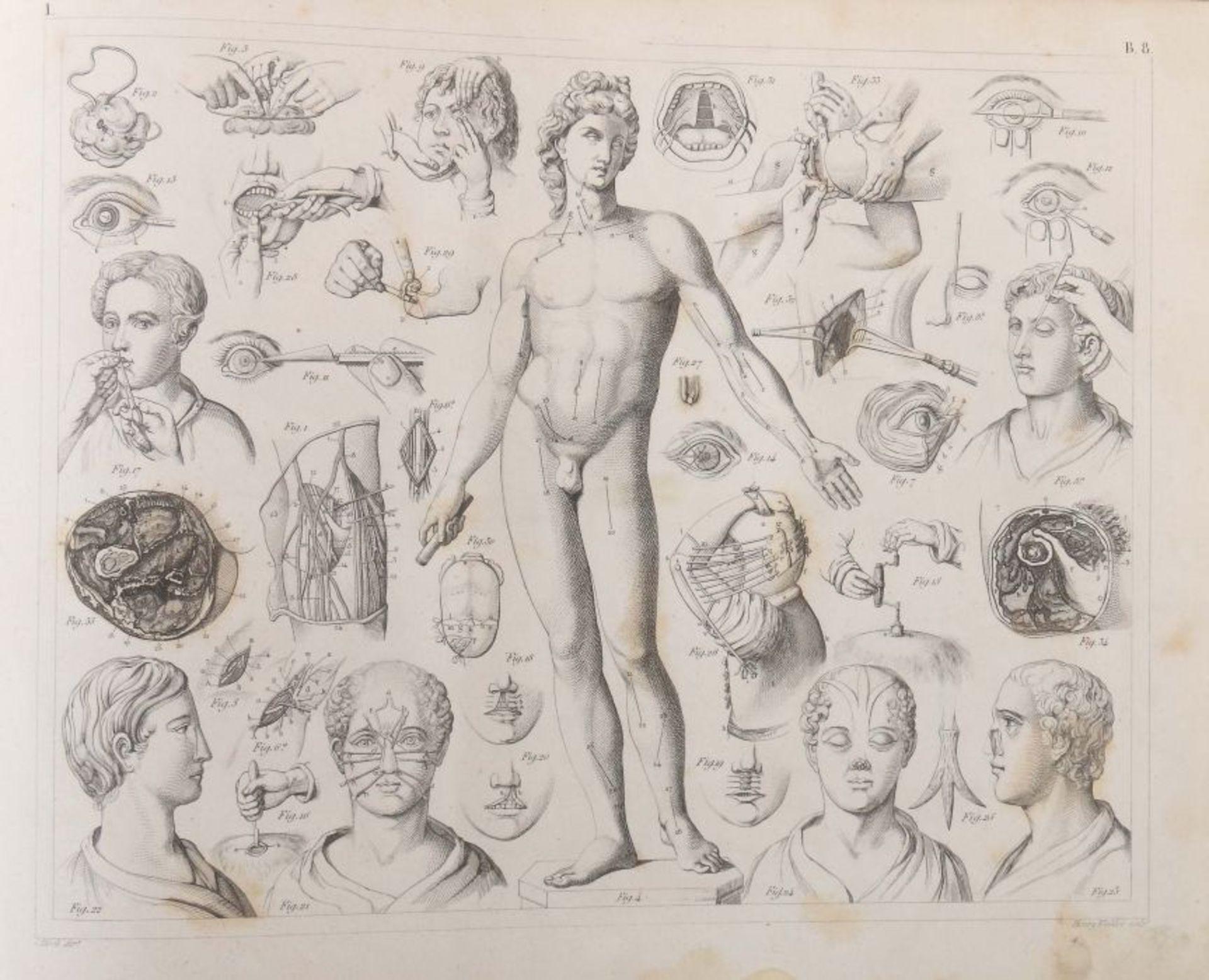 Heck, Johann Georg (bearb.) Bilder-Atlas zum Conversations-Lexikon - Ikonographische Encyklopädie - Bild 7 aus 7