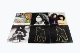 Tyrannosaurus Rex / T Rex LPs, nine albums comprising Unicorn, A Beard Of Stars, My People Were Fair