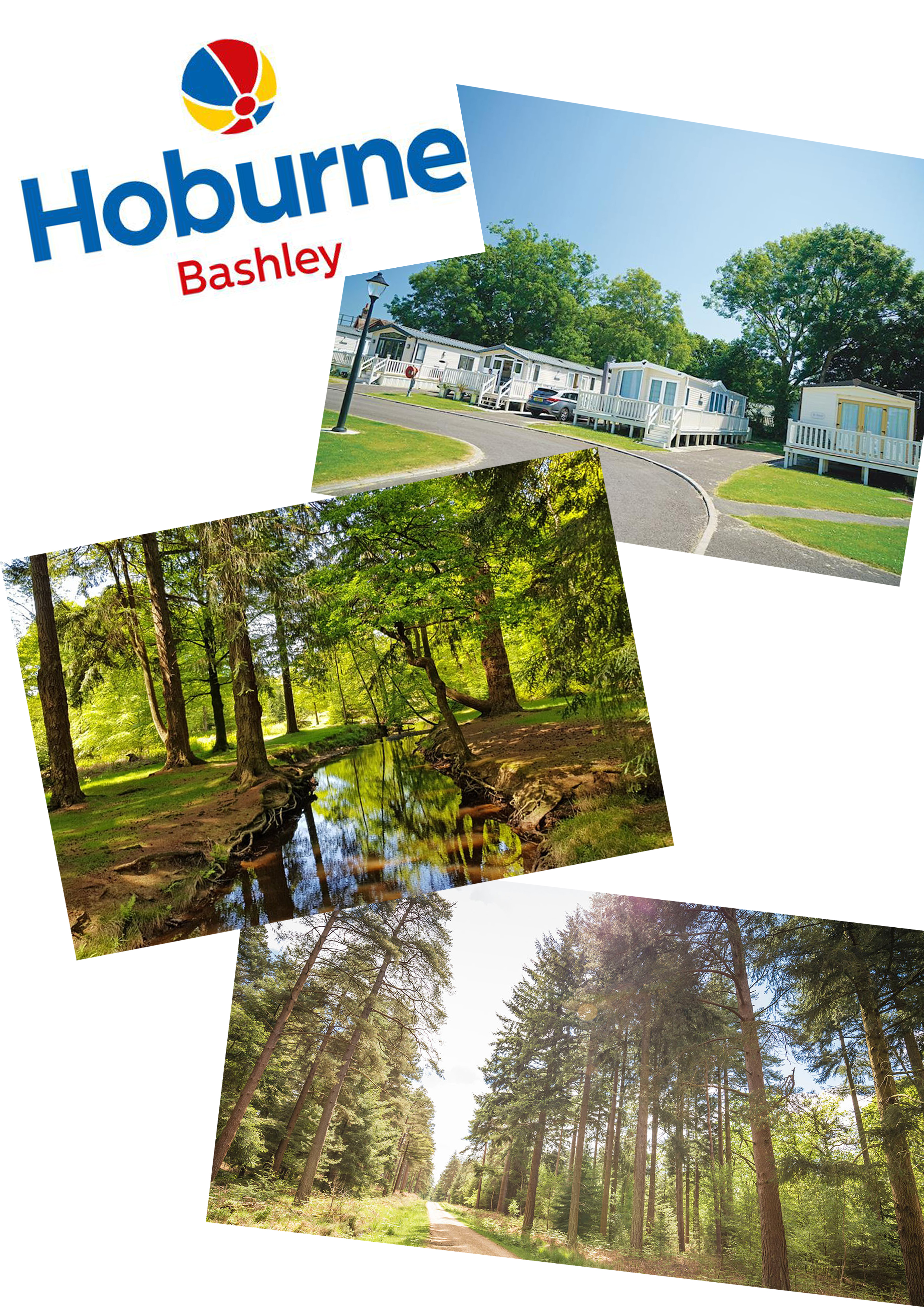 Lot 22 - Summer 2021 - A summer break within the New Forest. Your accomodation will be at hoburne Bashley the